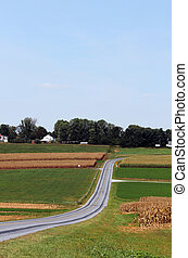 Amish Country Farm Landscape - Winding road through...