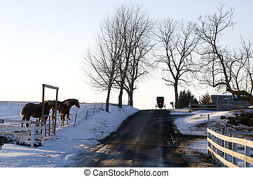 Amish Country in Ohio During Winter
