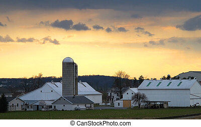 Amish Farm At Dusk - A typical Amish farm in Lancaster...