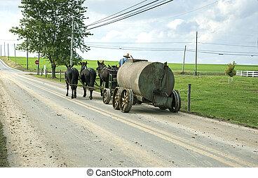 Amish farming.
