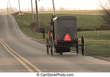 amish horse and buggy - Amish horse and buggy, Chester...
