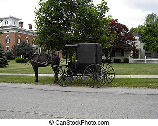 Horse and Buggy - Amish Horse and Buggy