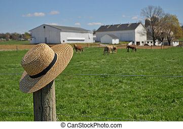 Amish straw hat on a Pennsylvania farm - Amish straw hat...