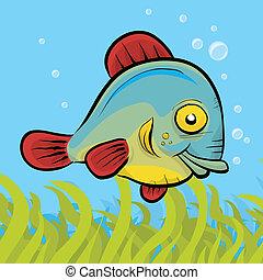 amistoso, pez