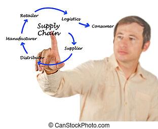 amministrazione, catena, fornitura