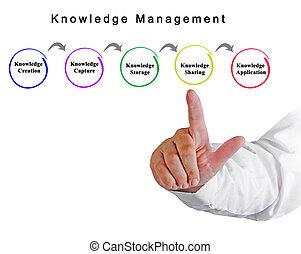 amministrazione, conoscenza