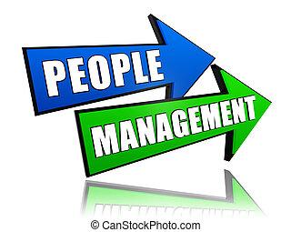 amministrazione, frecce, persone