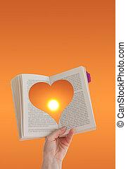 amministrazione, riuscito, condurre, conoscenza, mano, libro, presa a terra