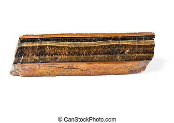 ammonite, brun, minéral, long