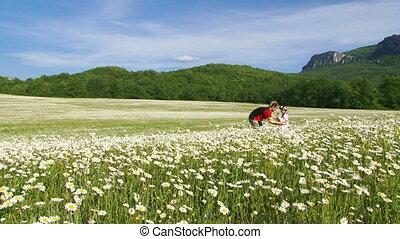 Among blooming chamomile
