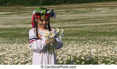 Among blossoming chamomile