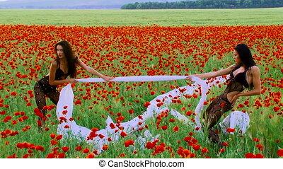 Among poppies