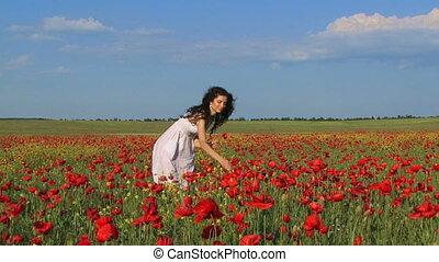 Among poppy flowers