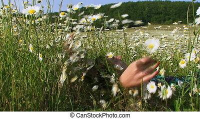 Among summer flowers