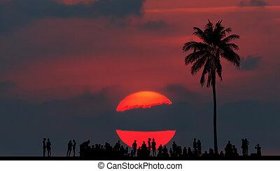 Among sunset