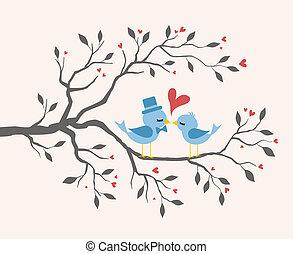 amor, beijando, pássaros, em, árvore