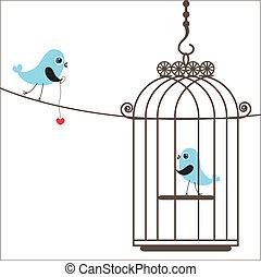 amor, birdcage, cute, pássaros