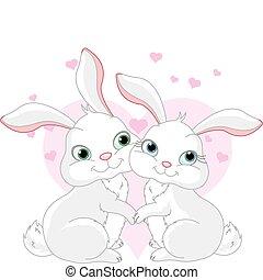 amor, coelhinhos