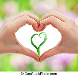 amor, e, proteja, natureza, e, vida