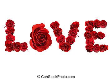 amor, isolado, spelled, rosas, branco vermelho