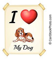 amor, meu, cão