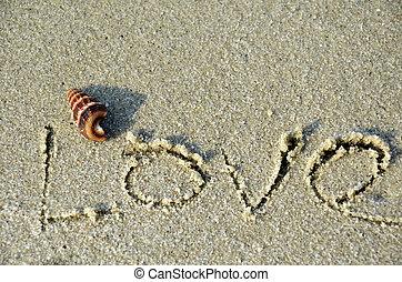 amor, palabra, en, el, playa.