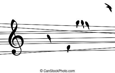 amor, para, música, composición