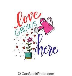 amor romántico, lettering., amor, grows, here.