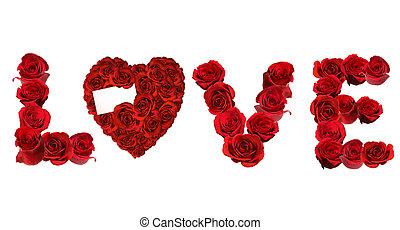amor, spelled, rosas, indivíduo, fundo, branca