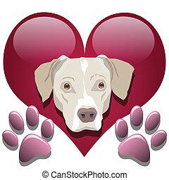 amore, cani
