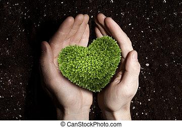 amore, natura