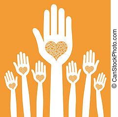 amoroso, manos, design.