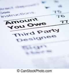 Amount You Owe - Vertical photo of form with Amount You Owe...