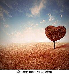 amour, arbre