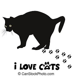 amour, carte, chats