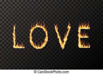 amour, fait, mot, flammes, brûler, haut, clair, lettres, transparent