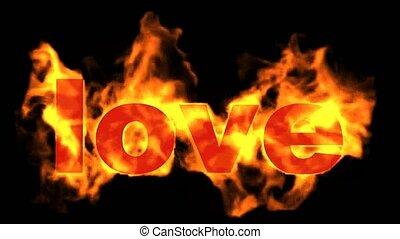 amour, mot, flammes