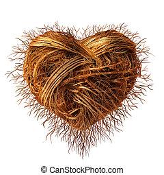 amour, racines
