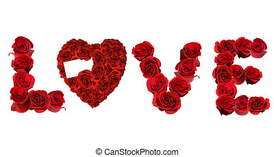 amour, spelled, roses, individu, fond, blanc