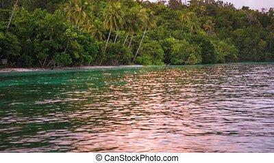 ampat, île, plage, raja, lumière, homestay, indonésie, surface, eau, gam, refléter, coucher soleil, huttes, ouest, papouasie