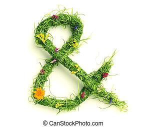 ampersand, flores, feito, capim