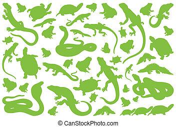 Amphibian reptile environmental vector