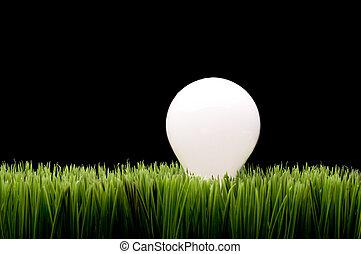 ampoule, herbe, vert, incandescent