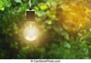 ampoules, concept, bulbs., lumière, créativité, idée, one., incandescent, pendre