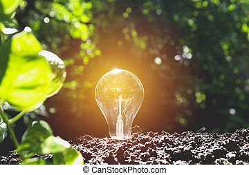 ampoules, concept, bulbs., lumière, créativité, idée, one., incandescent