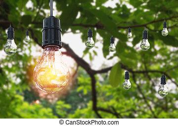 ampoules, concept, bulbs., nature, lumière, créativité, idée, une, arrière-plan., incandescent, pendre