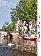 amsterdam, kanalen