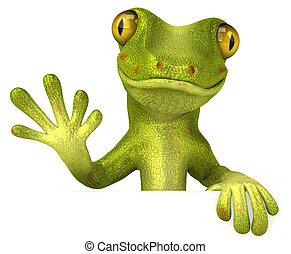 amusement, gecko