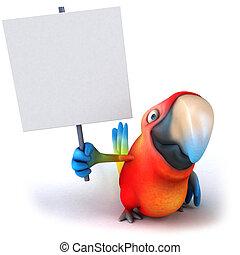 amusement, perroquet
