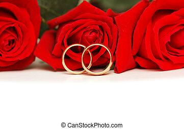 anéis, casório, isolado, rosas, branco vermelho, dois